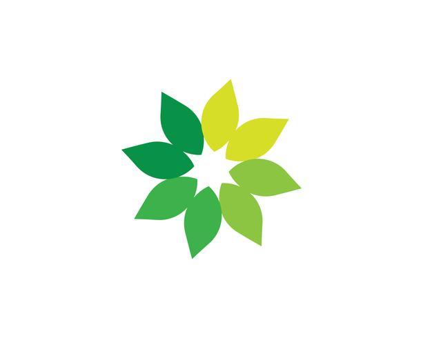 logotipo de natureza verde folha e modelo de símbolo .. vetor