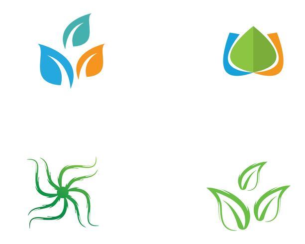 Hoja verde naturaleza logotipo y símbolo plantilla Vector ...