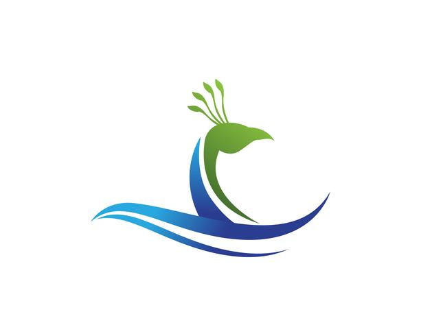 Aplicación de icono de logotipo y símbolos de cabeza de pavo real vector