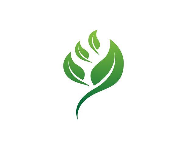 Blattgrün Natur Logo und Symbol Vorlage Vektor ..