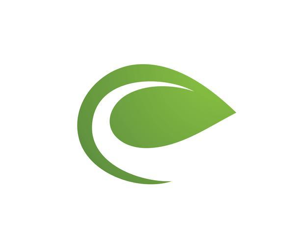 foto de leaf green nature logo and symbol template Vector