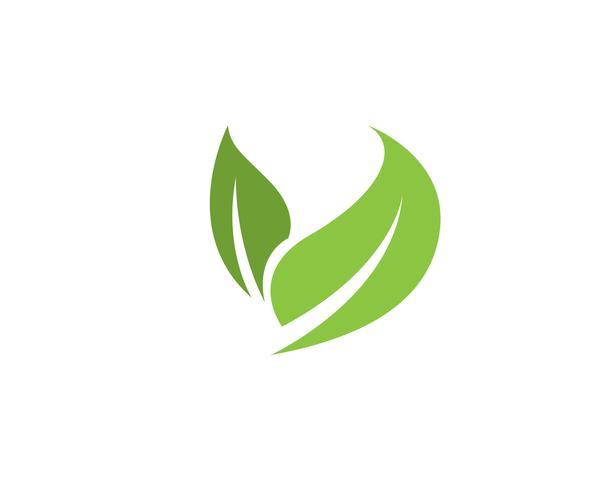 grünes Blatt Ökologie Natur Element Vektor Icon,
