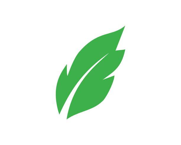Logos de ecologia de folha de árvore verde