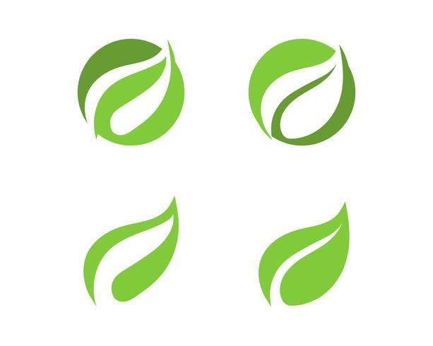hoja verde ecología naturaleza elemento vector