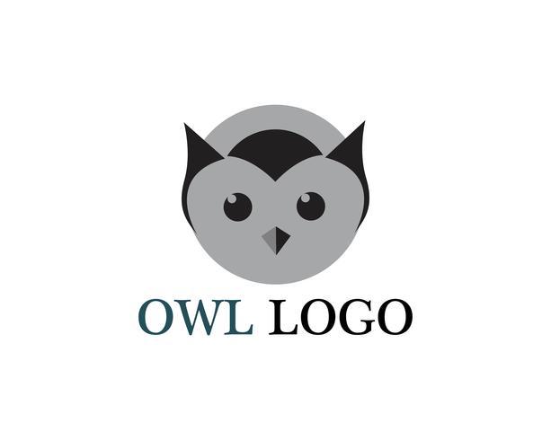 Cabeça de coruja pássaro logo vector modelo animal