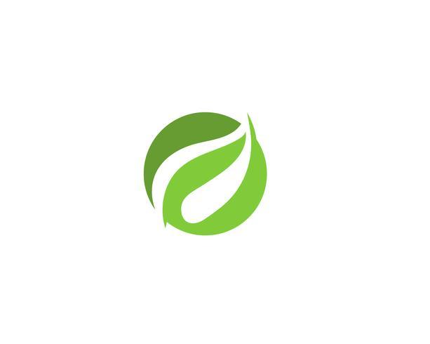 vetor de elemento de natureza ecologia folha verde