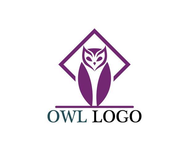 Búho cabeza pájaro logo vector plantilla animal