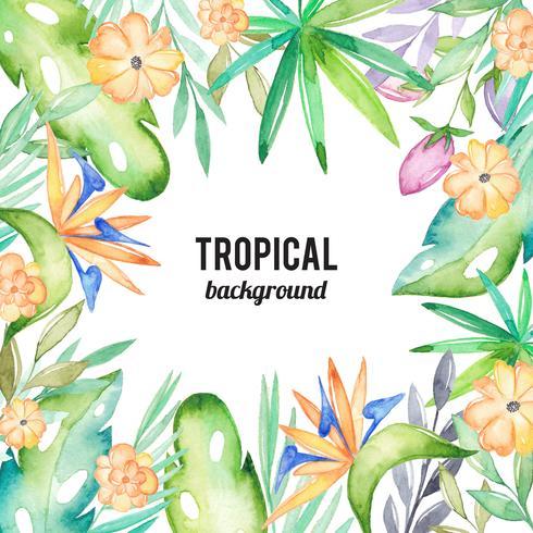 Aquarelle fond tropical vecteur