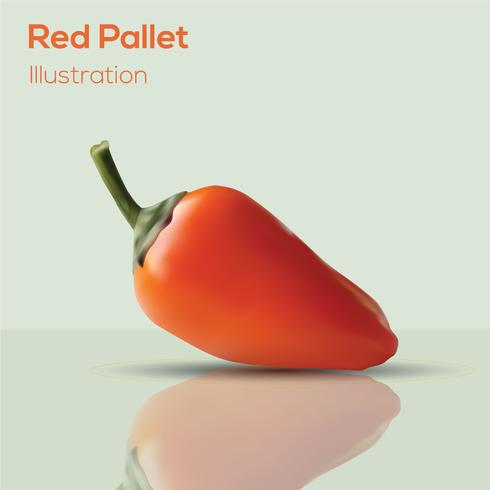 Realistisches Design des roten Paletten-Vektors