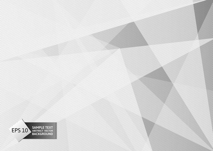 White and gray color polygon and line abstract background modern design, Vector illustration for your business