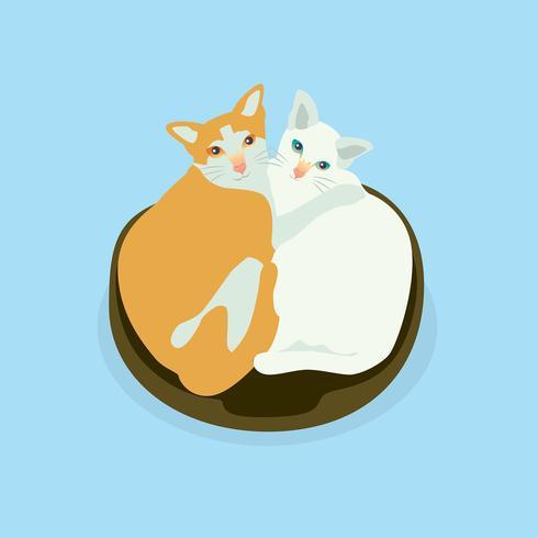 小貓圖案 免費下載   天天瘋後製