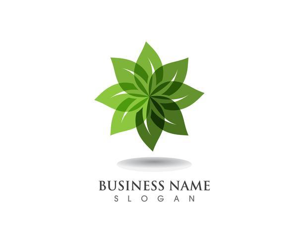 Plantilla de logotipo y símbolo de naturaleza verde hoja vector