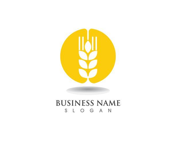Trigo logotipo y símbolos plantilla vector icono de diseño