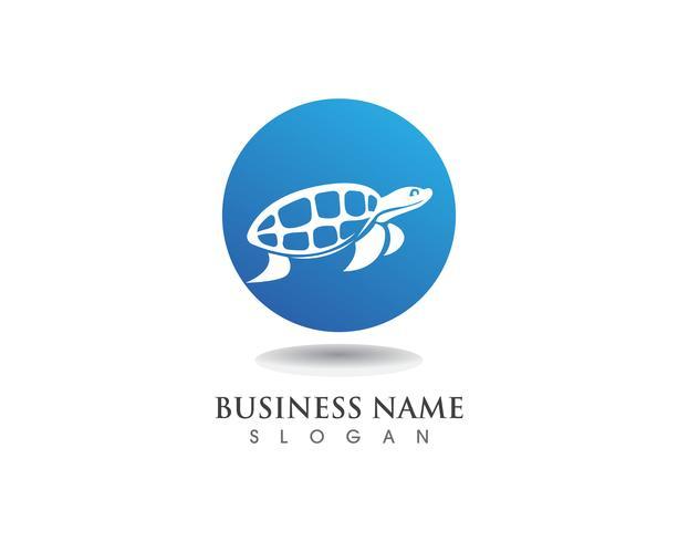 tortuga animal dibujos animados imagen vector ilustración diseño