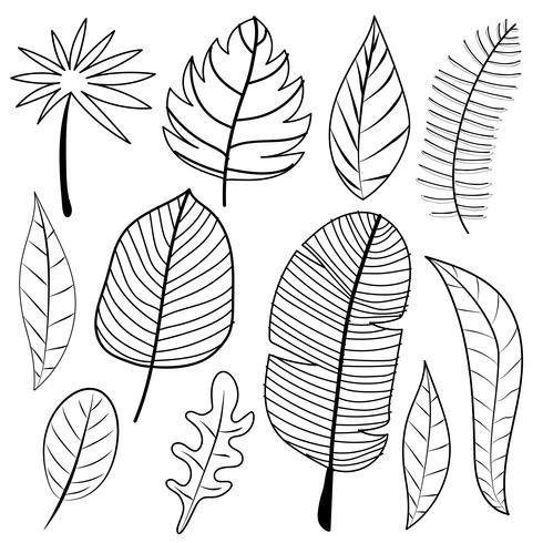 Deixa Doodle Vector Set. Ilustração vetorial.