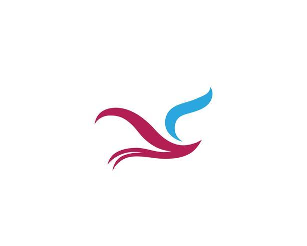 Bird and wing logo vector template