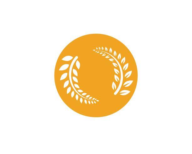 agricoltura modello di logo di cibo e simboli di pasto di riso di cibo
