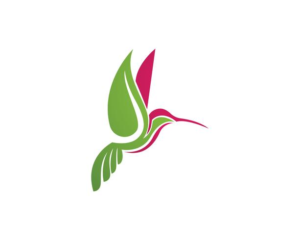 Colibri Logo et symboles iconTemplate app