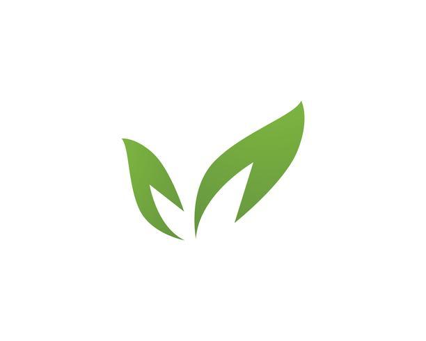 modèle de logo et symbole nature feuille verte
