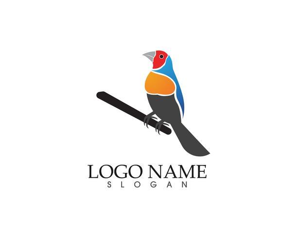 fågel underteckna abstrakt mall ikoner app