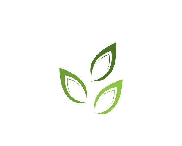 Signo de flor de loto para el bienestar, spa y yoga. Vector