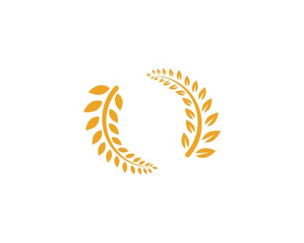 agricultura arroz comida comida logotipo y símbolos plantilla iconos vector