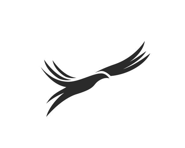Illustrazione di vettore del modello di logo dell'uccello