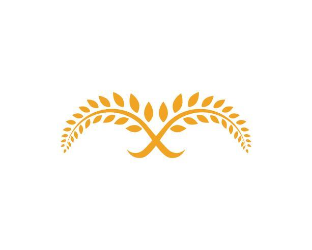 Landwirtschaft Reis Essen Mahlzeit Logo und Symbole Vorlage Icons Vektor