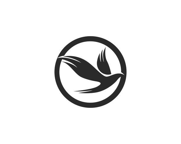 Vogel fliegen Zeichen abstrakte Vorlage Icons Vektor