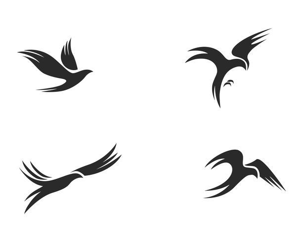 Ilustração em vetor pássaro logotipo modelo