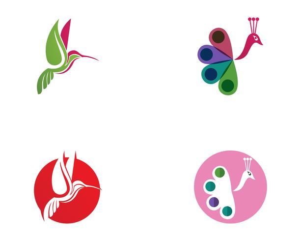 Hummingbird Logo y símbolos iconsTemplate aplicación