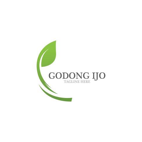 Loghi di ecologia foglia verde