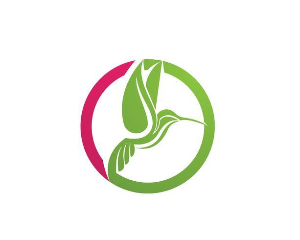 Beija-flor logotipo e símbolos iconTemplate app