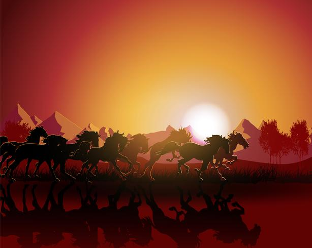 Horse silhouette on sunset background.