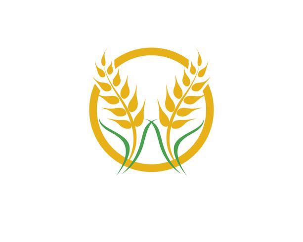 Jordbruksvete vektor
