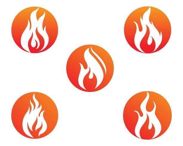 Dating flamma
