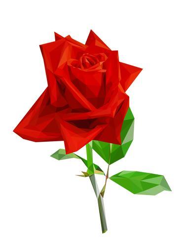 Rosa poligonal rojo