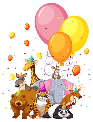 Sats med födelsedagsdjur