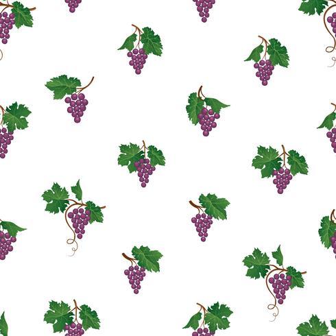 Druiventak naadloos patroon. Wijngaard natuurlijk fruit ornament. Voedsel achtergrond. vector