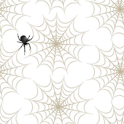 Halloween sömlöst mönster. Semester bakgrund med spindel, webben vektor