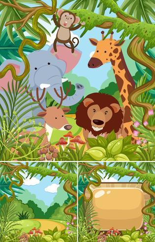Naturszenen mit wilden Tieren im Dschungel