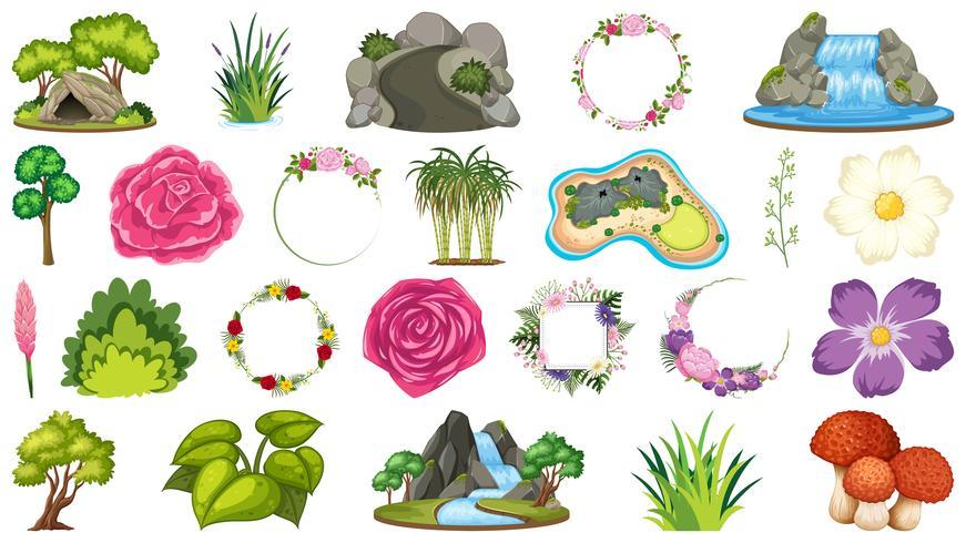 Set of ornamental plants vector