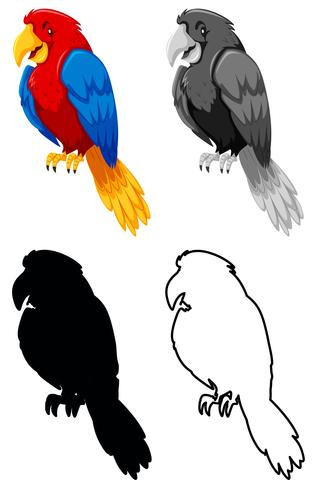 Set of parrot character vector
