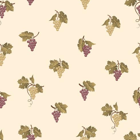 Grape branch seamless pattern. Wine yard natural fruit ornament. Food background. vector