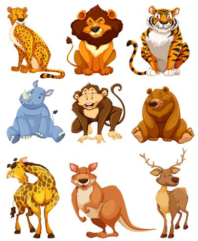 Set of wild animal character vector