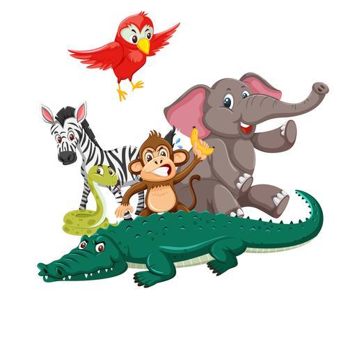 Grupo de animais selvagens vetor