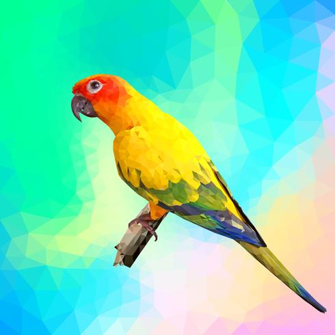 colorful parrot with polygon style