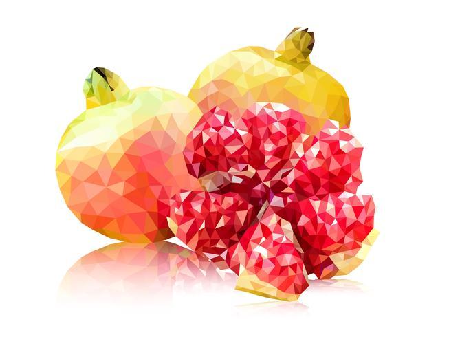 Polygon pink pomegranate vector