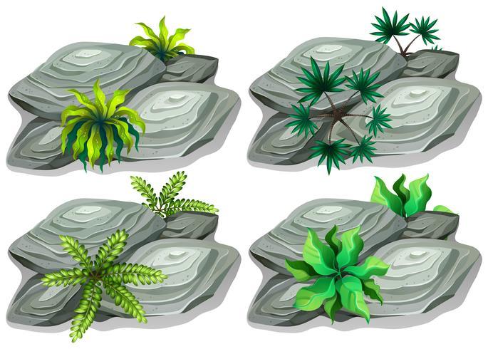Set of nature rock vector
