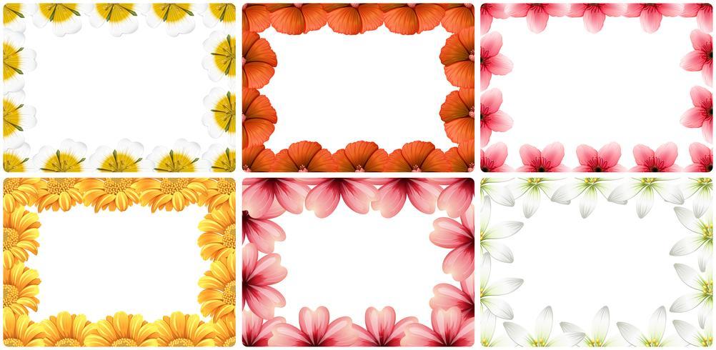 Set of flower border vector